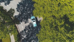 Car driving through tree-lined road - aerial shot